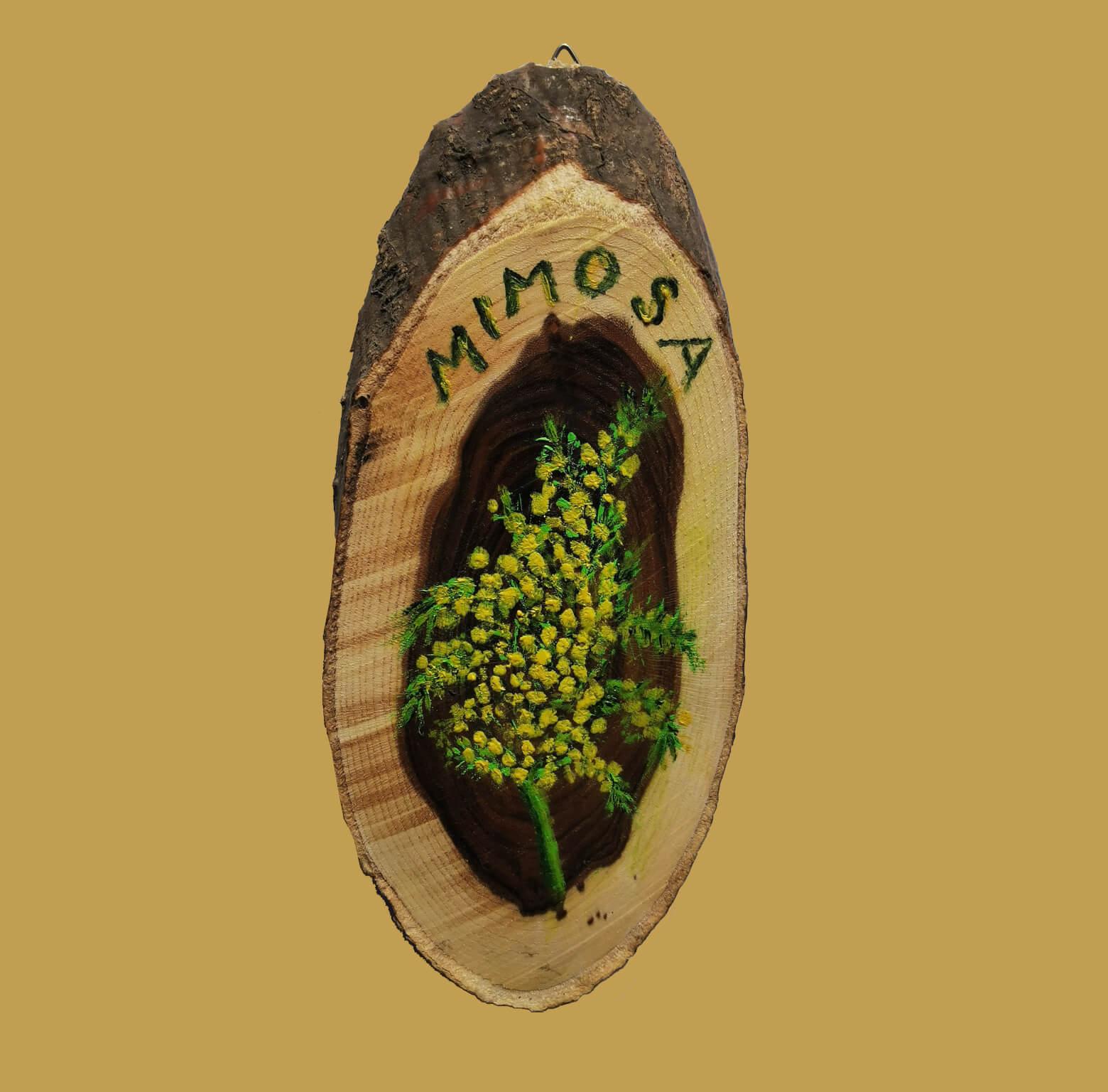 t mimosa - MIMOSA